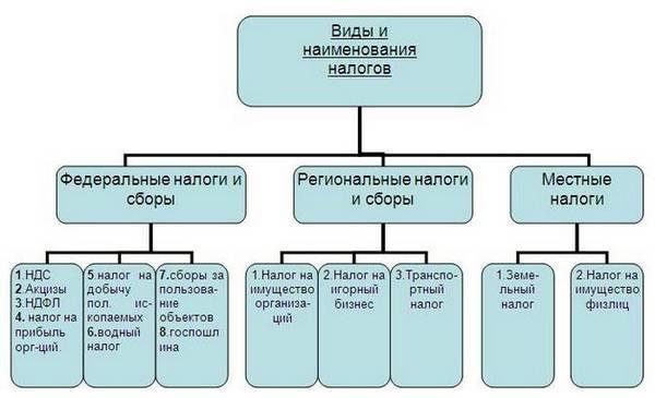 federalnye-nalogi-i-sbory