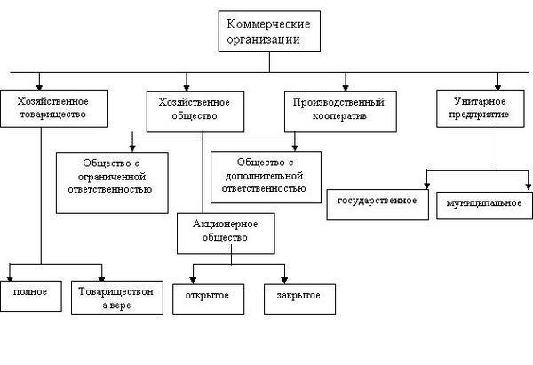 kommercheskaya-organizaciya-3