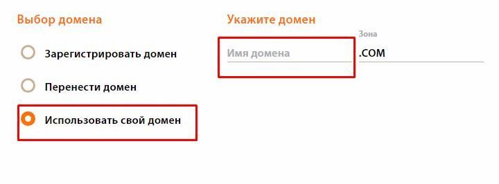 Пункт Использовать свой домен