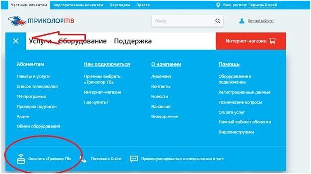 Оплата услуг через Интернет на сайте