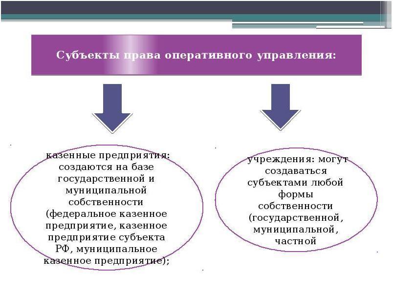 Виды субъектов права управления