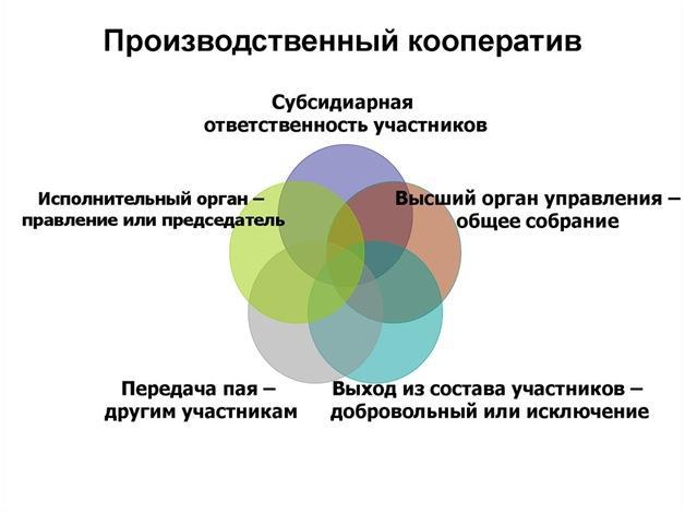 Структура производственного кооператива