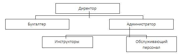 Организационная структура фитнес-